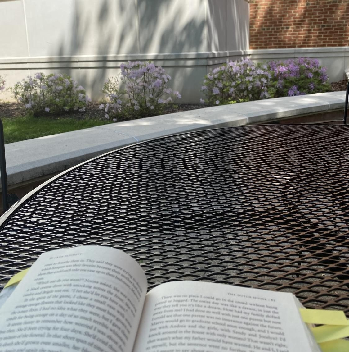 Beautiful day to read outside!