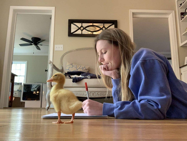 Senior Hadleigh Locraft completes her final week of school with her pet duck.